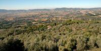 Narni panorama